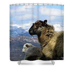 Mother And Lamb Shower Curtain