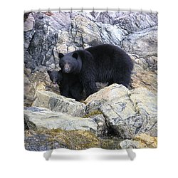 Mother Bear And Her Cub Shower Curtain