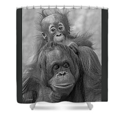 Motherhood 14 Shower Curtain