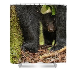 Mothers Day Bear Card Shower Curtain by Everet Regal
