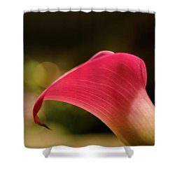 Mother's Day Lily Shower Curtain