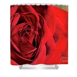 Mother's Day Rose Shower Curtain
