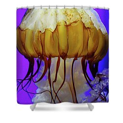 Motion In Reds And Oranges Shower Curtain