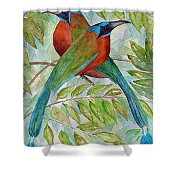 Motmots Shower Curtain