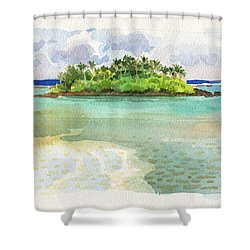 Motu Taakoka Shower Curtain
