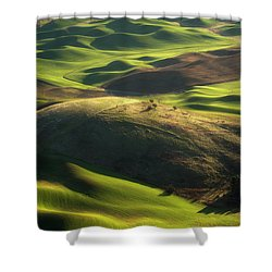Mounds Of Joy Shower Curtain