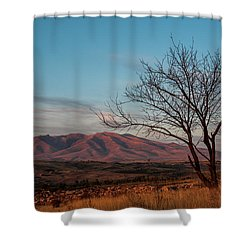 Mount Ara At Sunset With Dead Tree In Front, Armenia Shower Curtain
