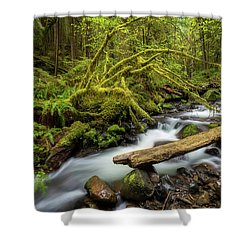 Mount Hood Creek Shower Curtain