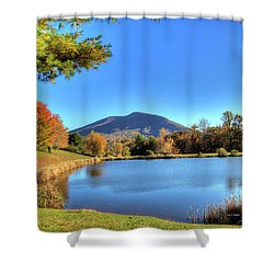 Mount Jefferson Reflection Shower Curtain by Dale R Carlson