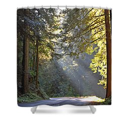Mount Rainier At Nisqually Shower Curtain