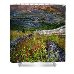 Mount Saint Helens Shower Curtain by Inge Johnsson
