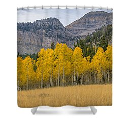 Mount Timpanogos Meadow In Fall Shower Curtain