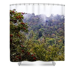 Mountain Ash On A Misty Mountain Shower Curtain