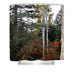 Mountain Autumn Shower Curtain