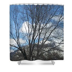 Shower Curtain featuring the photograph Mountain Backdrop by Jewel Hengen
