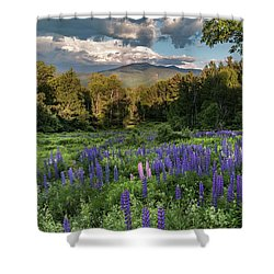 Mountain Blooms Shower Curtain by Bill Wakeley