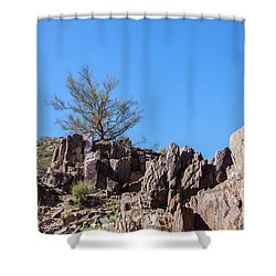 Mountain Bush Shower Curtain by Ed Cilley
