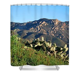 Mountain Cactus View - Santa Monica Mountains Shower Curtain