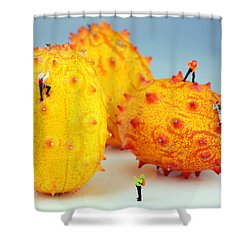 Mountain Climber On Mangosteens Shower Curtain