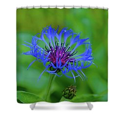 Mountain Cornflower Shower Curtain