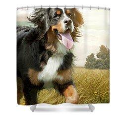 Mountain Dog Shower Curtain