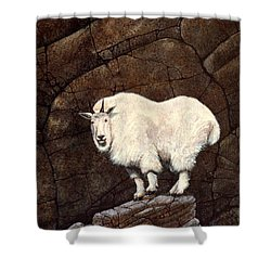 Mountain Goat Shower Curtain by Frank Wilson