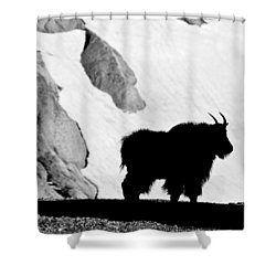 Mountain Goat Shadow Shower Curtain