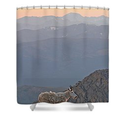 Shower Curtain featuring the photograph Mountain Goat Sunset by Scott Mahon