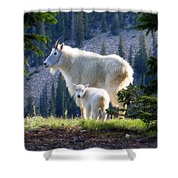 Shower Curtain featuring the photograph Someone To Watch Over Me by Karen Shackles