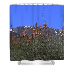 Mountain Gradure Shower Curtain by Alan Johnson