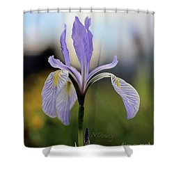 Mountain Iris With Bud Shower Curtain