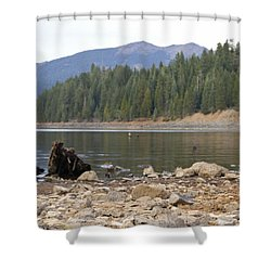 Shower Curtain featuring the photograph Mountain Lake by Cindy Garber Iverson