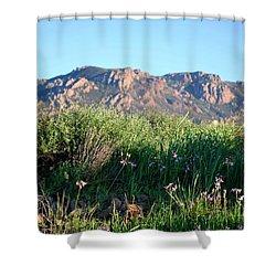 Shower Curtain featuring the photograph Mountain Landscape View - Purple Flowers by Matt Harang