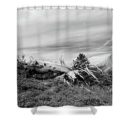 Mountain Landscape With Fallen Tree And View At Alps In Switzerland Shower Curtain