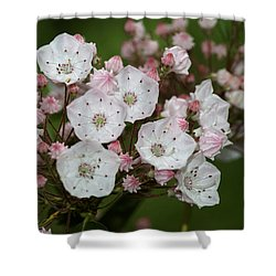 Mountain Laurel I Shower Curtain
