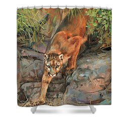 Shower Curtain featuring the painting Mountain Lion 2 by David Stribbling