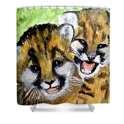 Mountain Lion Cubs Shower Curtain