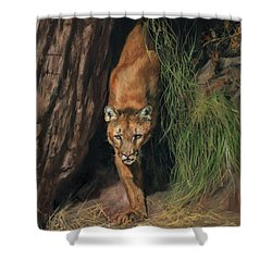 Shower Curtain featuring the painting Mountain Lion Emerging From Shadows by David Stribbling