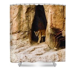 Mountain Lion In The Desert Shower Curtain