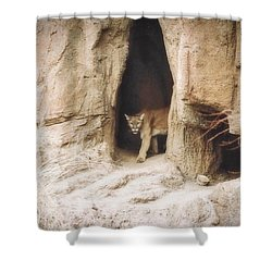 Mountain Lion - Light Shower Curtain