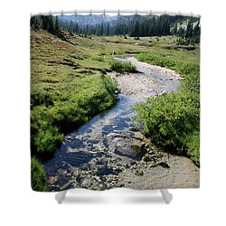Mountain Meadow And Stream Shower Curtain