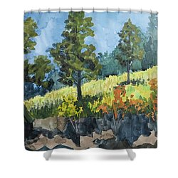 Mountain Meadow Shower Curtain by Bethany Lee