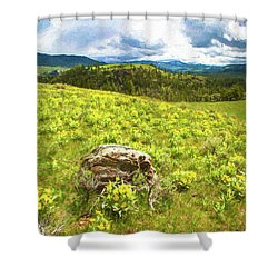 Mountain Meadow Impressionist Digital Art Shower Curtain