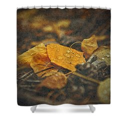Mountain Months  Shower Curtain by Mark Ross