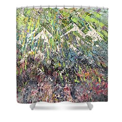 Mountain Of Many Colors Shower Curtain by George Riney