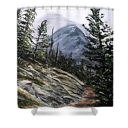 Shower Curtain featuring the painting Mountain Pathway by Patricia L Davidson
