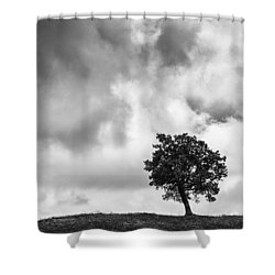 Tree On Hill - Doughton Park Blue Ridge Parkway Shower Curtain