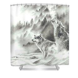 Mountain Spirits Shower Curtain