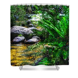 Mountain Stream Shower Curtain by Blair Stuart