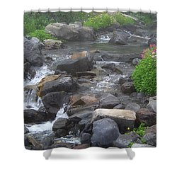 Mountain Stream Shower Curtain by Charles Robinson
